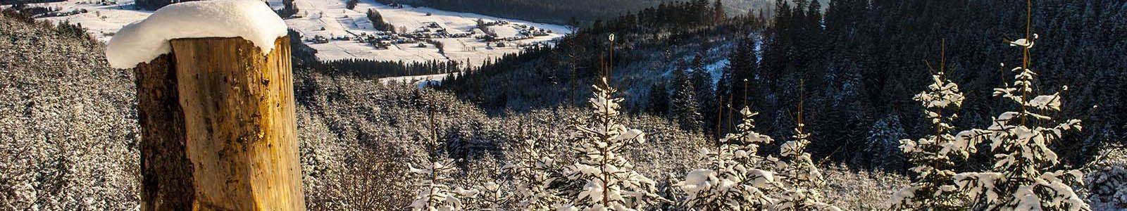Domki z widokiem na góry